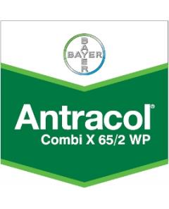 ANTRACOL COMBI X 652 WP 50gr