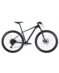 BIANCHI  GRIZZLY   29.2 - NX Eagle 1x12sp