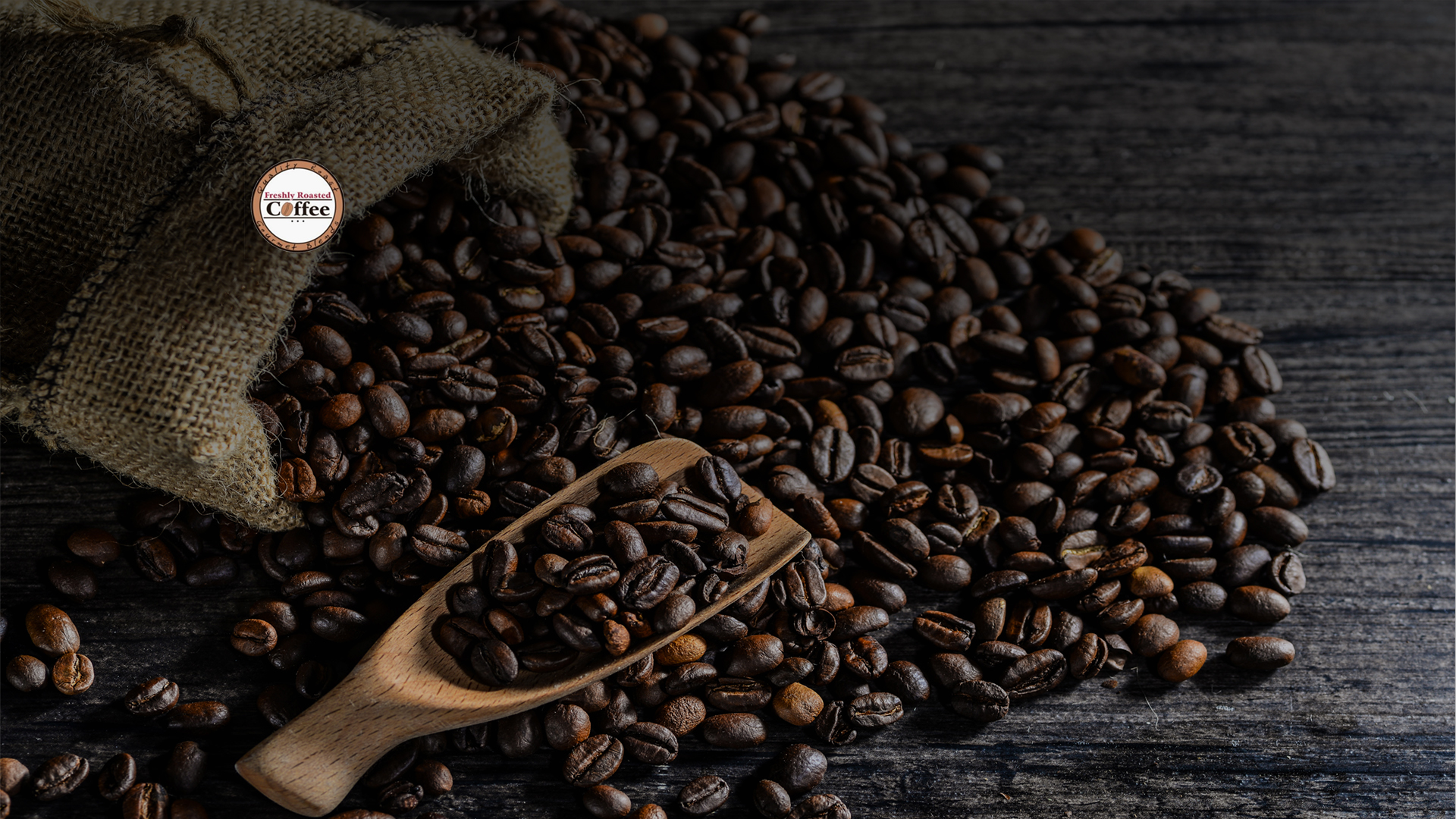 <h2>Freshly Roasted Coffee</h2><p>Εμπόριo Καφέ - Χονδρική Πώληση Λάρισα</p><div class='bgslideshowmore'><a href='http://www.spanoszaharias.4ty.gr/contact.php?l=el' >Περισσότερα...</a></div>